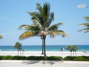 Ft. Lauderdale 008